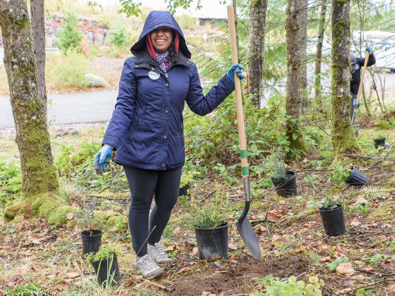 This is a photo of a woman in a purple coat planting a tree in a forest.