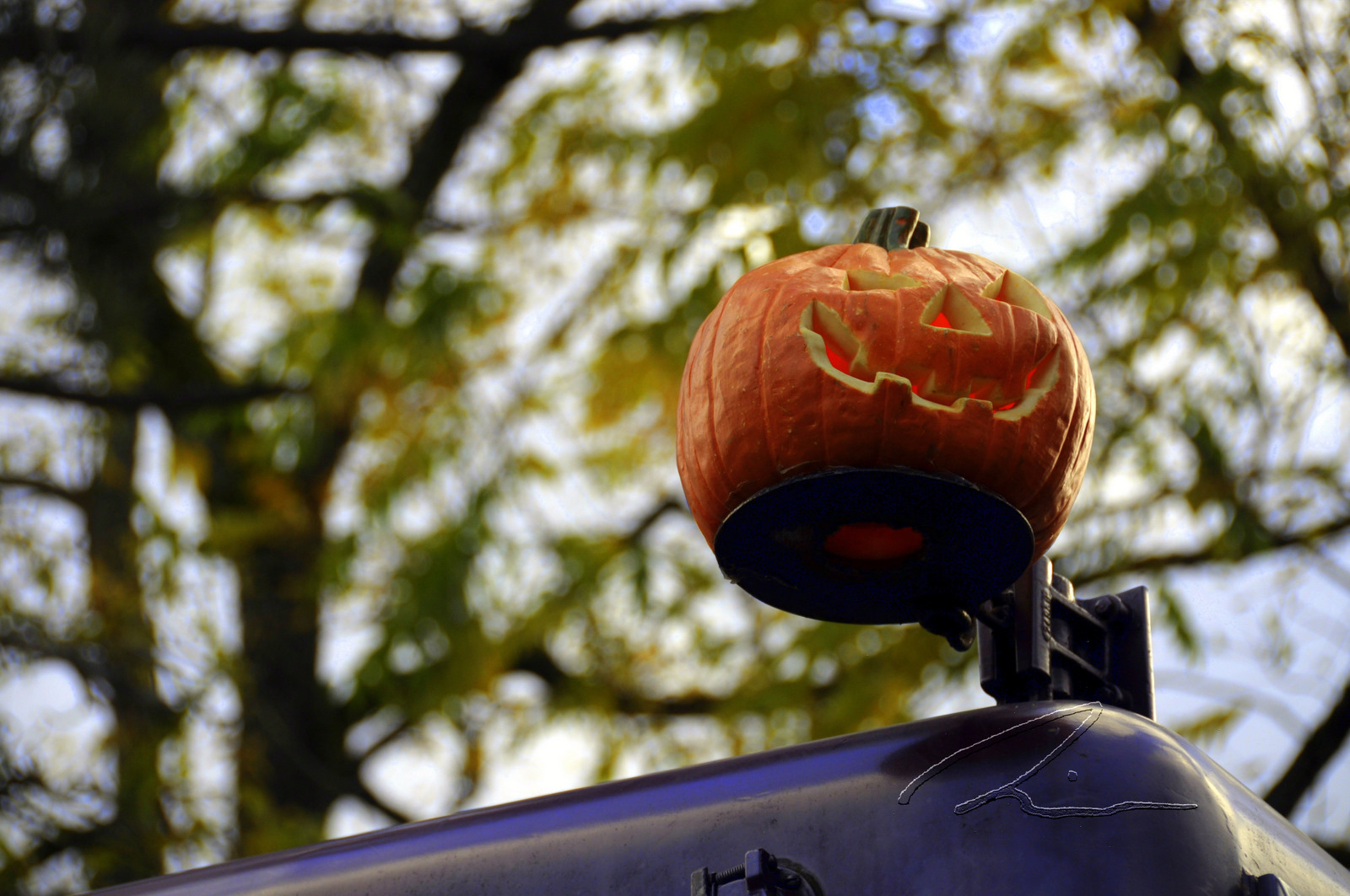 This is a photo of a pumpkin on top of a train.